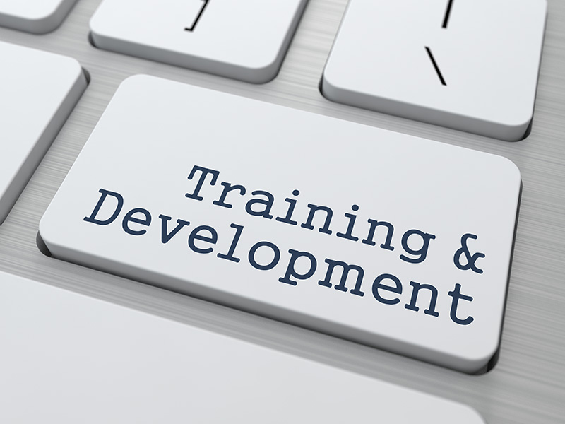 Training & Development Workshops